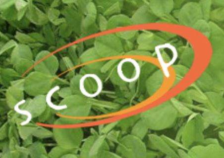 Scoop SA